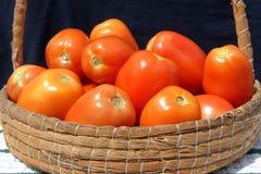 Tomates na cesta fotografia de stock