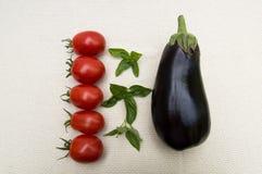 Tomates na fileira com beringela e manjericão Imagens de Stock