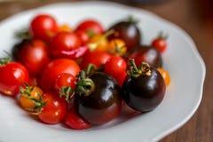 Tomates na placa Imagens de Stock Royalty Free