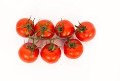 Tomates na videira Imagens de Stock Royalty Free