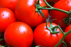 Tomates no mercado Foto de Stock Royalty Free