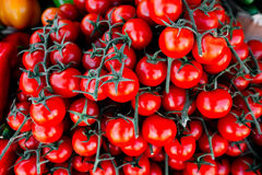 Tomates no mercado da manhã Fotografia de Stock Royalty Free