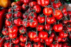 Tomates no mercado da manhã Fotografia de Stock Royalty Free