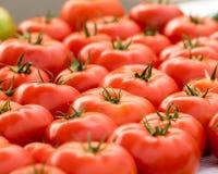 Tomates no mercado do fazendeiro Fotos de Stock Royalty Free