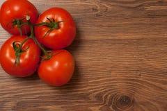 Tomates no ramo Fotografia de Stock Royalty Free