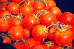 Tomates no ramo no contador Foto de Stock Royalty Free