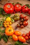 Tomates orgánicos coloridos fotos de archivo