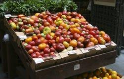 Tomates orgánicos en rectángulos del cartón Foto de archivo libre de regalías