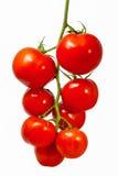 Tomates orgánicos frescos Foto de archivo libre de regalías