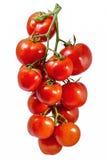 Tomates orgánicos frescos Fotos de archivo