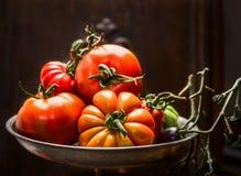 Tomates orgánicos frescos de la granja en el cuenco de acero sobre fondo de madera oscuro Fotos de archivo