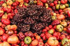 Tomates orgánicos frescos en el mercado de los granjeros en París Imágenes de archivo libres de regalías