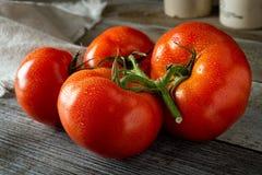 Tomates orgánicos maduros frescos Fotos de archivo libres de regalías