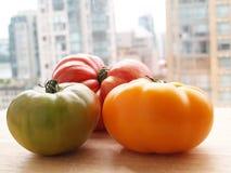 Tomates orgânicos Fotografia de Stock