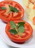 Tomates orgânicos Imagem de Stock
