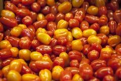Tomates orgânicos do mercado da vila Fundo qualitativo dos tomates Tomates frescos Tomates vermelhos Fotografia de Stock Royalty Free