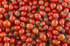 Tomates orgânicos do mercado da vila Fundo qualitativo dos tomates Tomates frescos Tomates vermelhos Foto de Stock Royalty Free