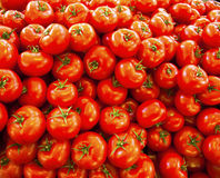Tomates orgânicos reais na tenda do mercado Imagem de Stock