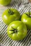 Tomates orgânicos verdes crus Foto de Stock Royalty Free