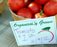 Tomates organiques Photos libres de droits