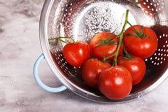 Tomates organiques dans un tamis Photo libre de droits
