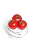 Tomates organiques rouges de raisin Photos stock