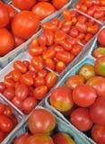 Tomates para a venda em um mercado dos fazendeiros Foto de Stock Royalty Free
