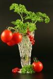 Tomates, pasa, perejil Fotografía de archivo