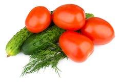 Tomates, pepinos e aneto isolados no branco Imagem de Stock