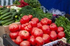 Tomates, pepinos, salsa no contador imagens de stock royalty free
