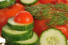 tomates, pepinos y eneldo Fotos de archivo libres de regalías