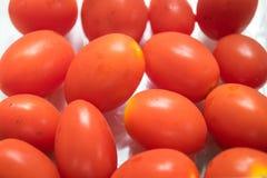 Tomates pequenos vermelhos Fotografia de Stock