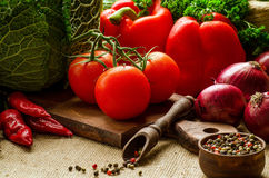 Tomates, pimentas, couve, cebolas, salsa e especiarias Imagens de Stock