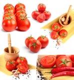Tomates, pimientas, espagueti y especias Fotografía de archivo