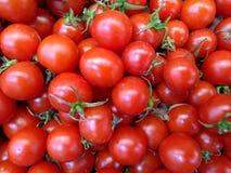 Tomates, primer rojo de la comida del fondo de la comida de los tomates imagen de archivo libre de regalías