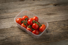 Tomates que sentam-se no recipiente plasic Fotos de Stock Royalty Free