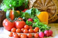 Tomates, rábanos, pimientas y perejil con el handbasket de mimbre Imágenes de archivo libres de regalías