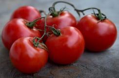 Tomates red delicious fraîches sur un vieux backgrou de table en bois Image libre de droits