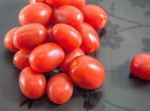 Tomates regordetes de la uva Fotos de archivo