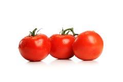Tomates rojos Imagen de archivo libre de regalías