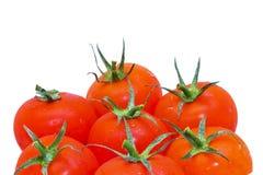 Tomates rojos aislados Imágenes de archivo libres de regalías