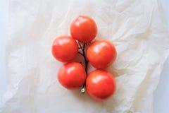 Tomates rojos brillantes en un fondo del blanco de la rama fotografía de archivo libre de regalías