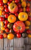 Tomates rojos con descensos del agua Tomates de diversas variedades fondo de los omatoes Concepto sano de la comida de los tomate Fotos de archivo