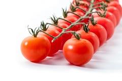 Tomates rojos con la rama en blanco Imagen de archivo