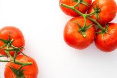 Tomates rojos con las gotitas de agua Imagenes de archivo