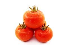 Tomates rojos de goteo Foto de archivo