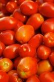 Tomates rojos de Roma Imágenes de archivo libres de regalías