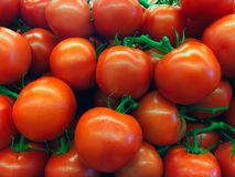 Tomates rojos frescos Foto de archivo libre de regalías
