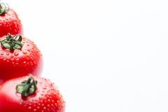 Tomates rojos frescos con descensos en un fondo blanco Foto de archivo libre de regalías