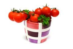 Tomates rojos frescos de la vid Foto de archivo libre de regalías